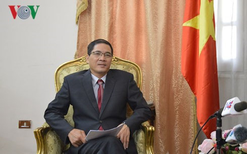 Vietnamese Ambassador to Egypt Do Hoang Long
