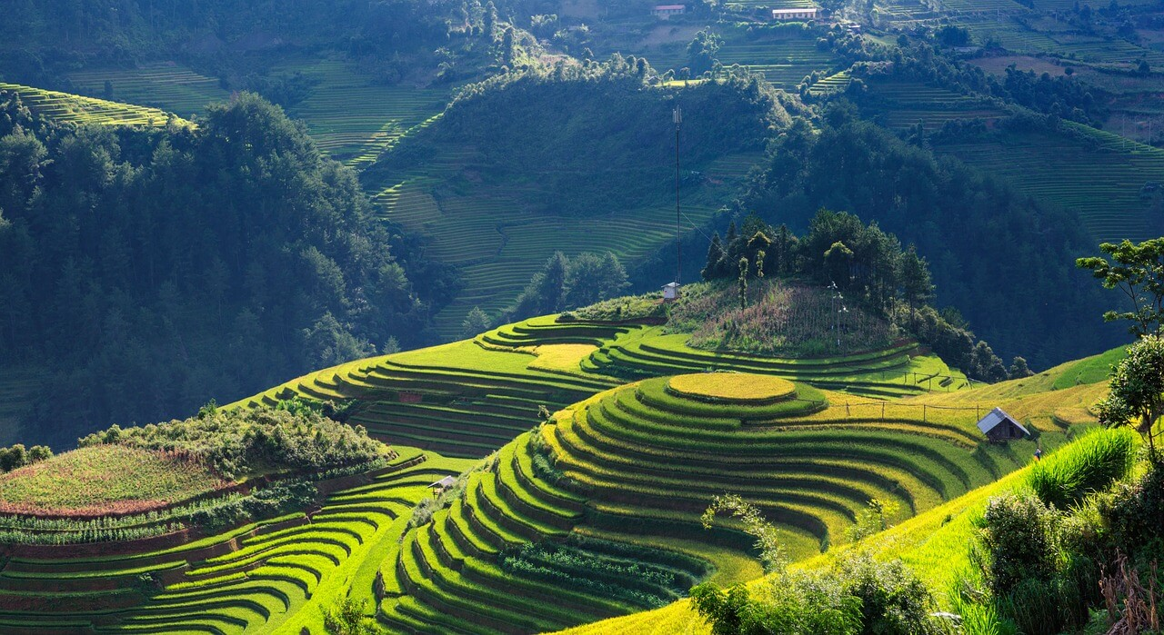 Tips to travel Vietnam: Best time of year to visit Vietnam